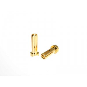 MR33 Gold Connector 5mm (2pcs)